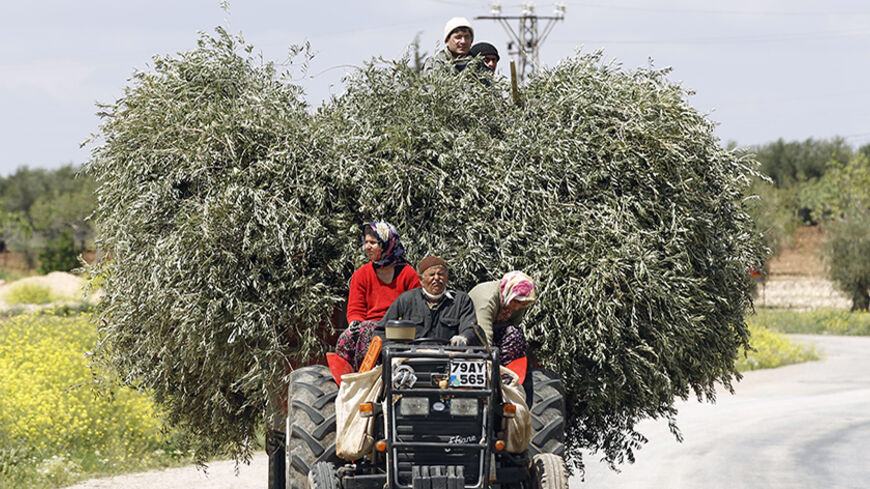 Villagers drive a tractor carrying olive tree branches near the border city of Kilis in Gaziantep province April 21, 2012. REUTERS/Murad Sezer (TURKEY - Tags: SOCIETY TRANSPORT) - RTR310YB