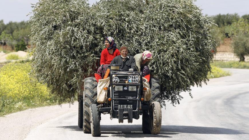 Villagers drive a tractor carrying olive tree branches near the border city of Kilis in Gaziantep province April 21, 2012. REUTERS/Murad Sezer (TURKEY - Tags: SOCIETY TRANSPORT) - GM1E84L1OQW01