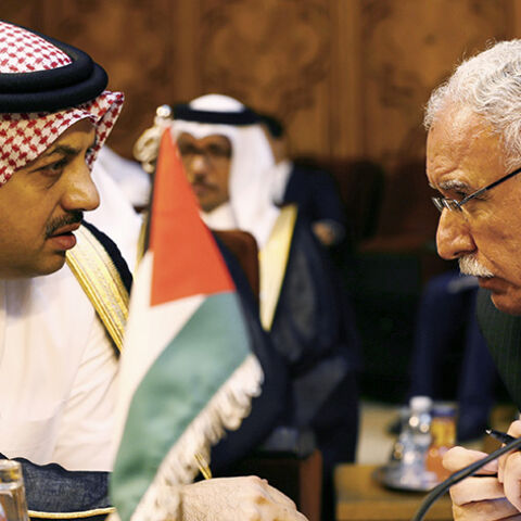 Palestinian Foreign Minister Riyad al-Malki (R) talks with Qatar's Foreign Minister Khalid bin Mohammed Al Attiyah during an extraordinary session of the Arab League at the league's headquarters in Cairo July 14, 2014. Egypt launched an initiative on Monday to halt fighting between Israel and Palestinian militants, proposing a ceasefire to be followed by talks in Cairo on settling the conflict in which Gaza authorities say more than 170 people have died. REUTERS/Amr Abdallah Dalsh  (EGYPT - Tags: POLITICS C