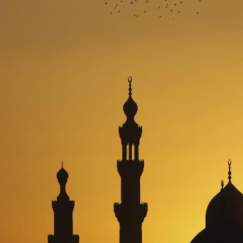 Birds fly over mosques during sunset in Old Cairo December 22, 2012. Early indications showed Egyptians approved an Islamist-drafted constitution after Saturday's final round of voting in a referendum despite opposition criticism of the measure as divisive.   REUTERS/Amr Abdallah Dalsh  (EGYPT - Tags: RELIGION ANIMALS SOCIETY POLITICS) - RTR3BUPB