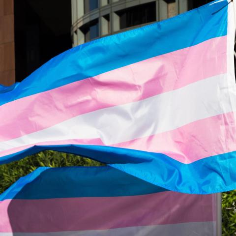 Trans pride flags flutter in the wind at a gathering to celebrate  International Transgender Day of Visibility, March 31, 2017 at the Edward R. Roybal Federal Building in Los Angeles, California.  International Transgender Day of Visibility is dedicated to celebrating transgender people and raising awareness of discrimination faced by transgender people worldwide. / AFP PHOTO / Robyn Beck        (Photo credit should read ROBYN BECK/AFP via Getty Images)